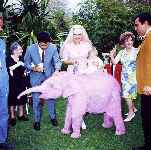 jayne mansfield celebrates her 33rd birthday, 1966