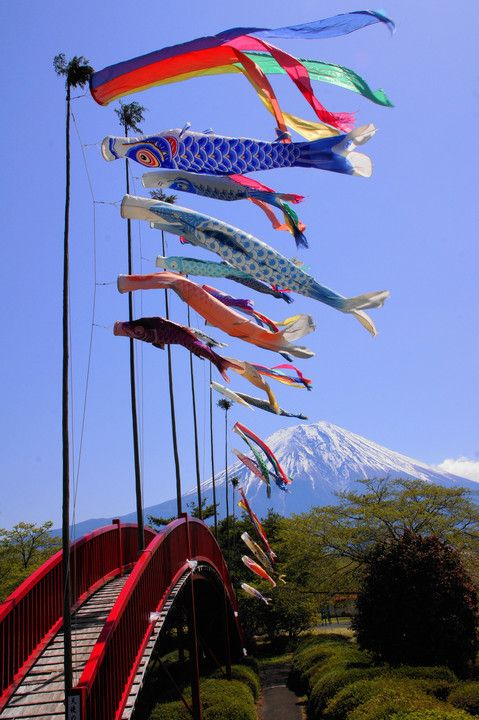 Mt. Fuji with Koinobori carp-shaped streamers (made of paper or cloth traditionally flown on Children's Day