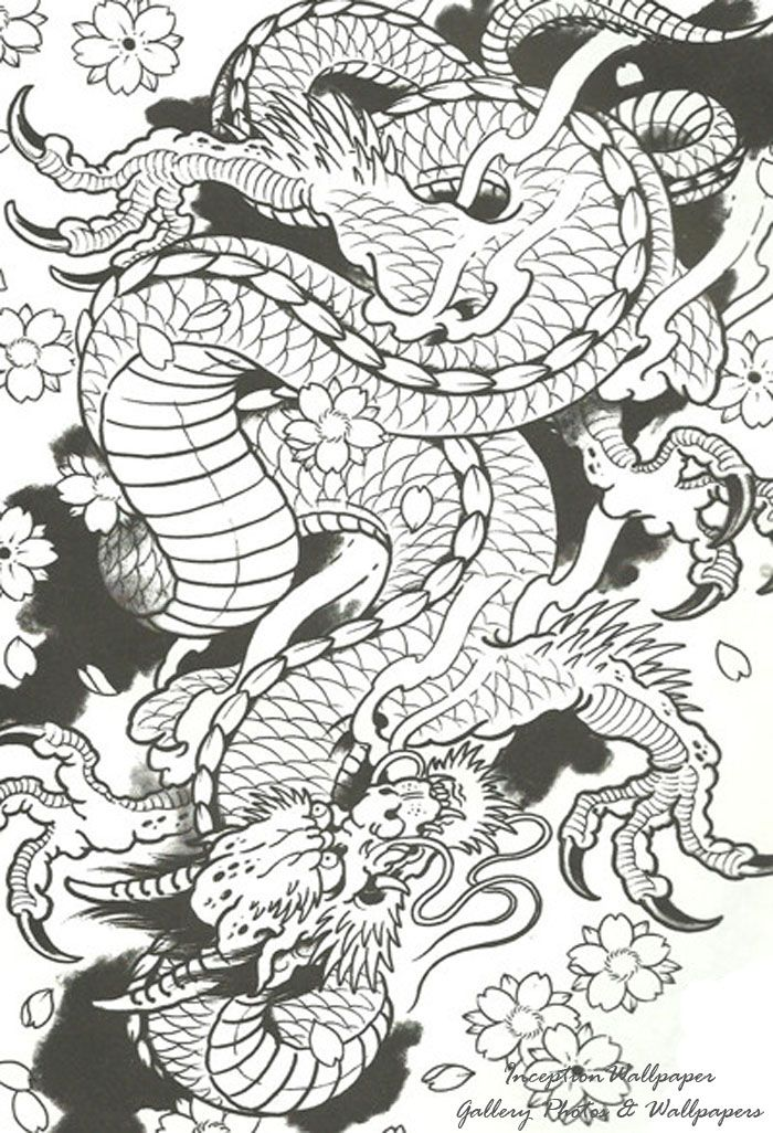 Chinese-Dragon-Tattoo-Designs-For-Men.jpg 700×1,026 pixels