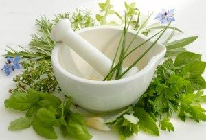 herbal treatment for canker sores