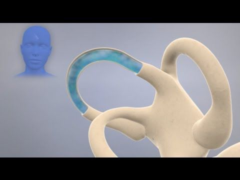 How the Inner Ear Balance System Works - Labyrinth Semicircular Canals - YouTube