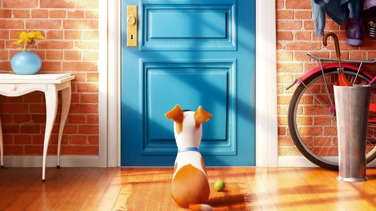 """Meet Snowball in New """"The Secret Life Of Pets"""" Trailer"""