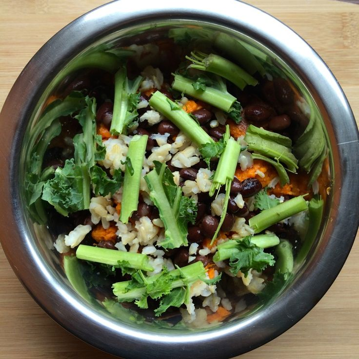Vegan Dog Food Recipe-sweet potato, brown rice, black beans, kale. Also like recipe from V-Dog founder: Dave's Special: Combine cooked brown rice and quinoa with steamed brocoli and carrots, then mix together with two tablespoons of peanut butter for a delicious, healthy canine meal.