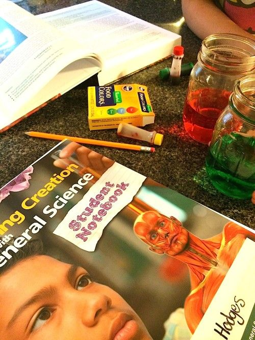 With giveaway of a year of science! Apologia General Science and Student Notebook review