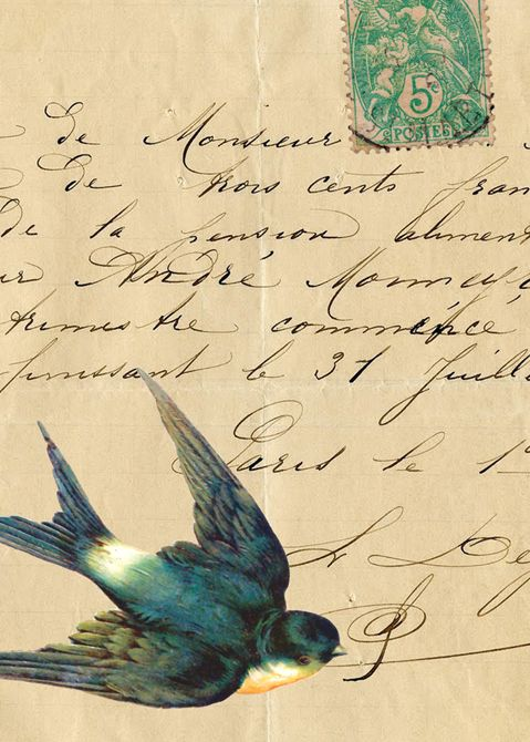 Swallow and an antique French letter.