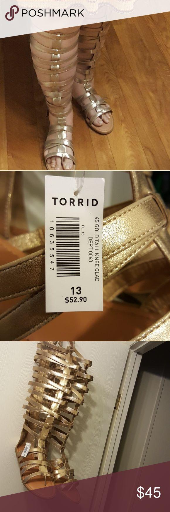 Size 13 Gold Tall knee Torrid Gladiators Size 13 Gold Tall knee Torrid Gladiators torrid Shoes Sandals