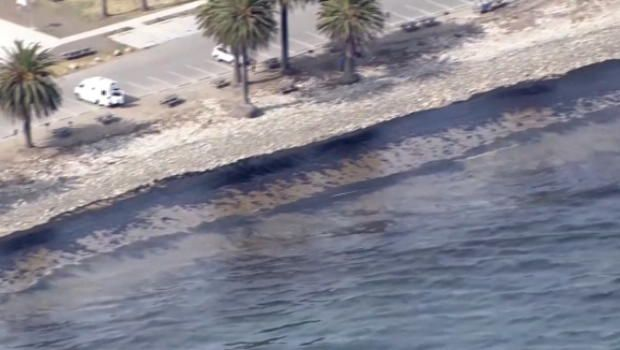 California oil spill: CEO of pipeline company apologizes for damage - World - CBC News