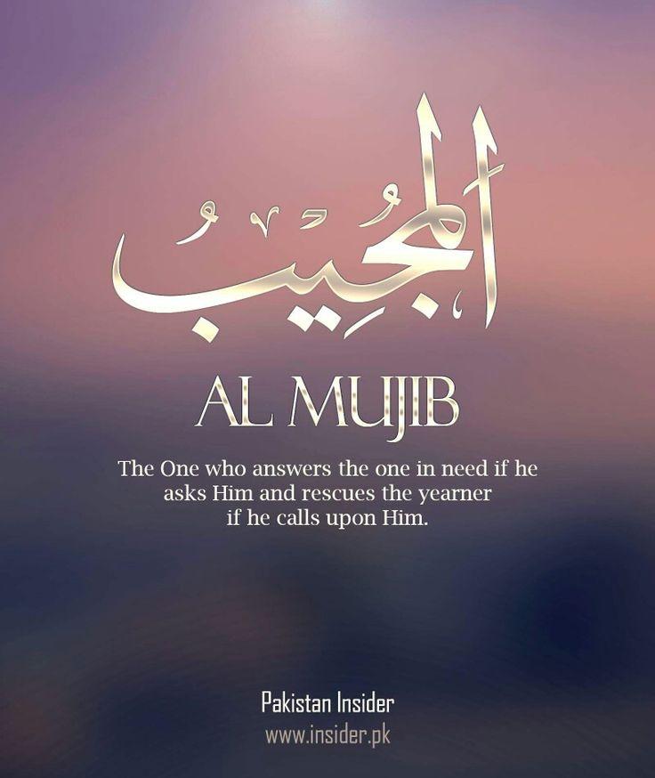 Al Mujib