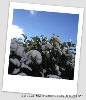 baffidigatto: Una poesia di Umberto Saba per un giorno d'inverno...