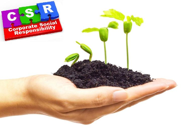 CSR Workspaces  -  For our Corp Development colleagues to discuss and devise support effort and resource planning.
