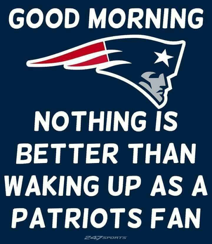 Nothing New England Patriots Memes New England Patriots Pictures New England Patriots Logo