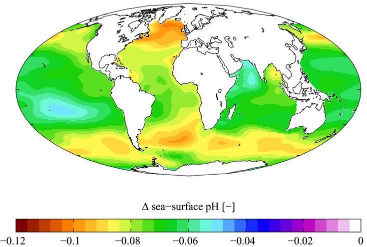 LA ACIDIFICACIÓN OCEÁNICA EN EL GOLFO PÉRSICO