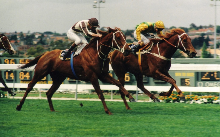 """Bonecrusher edges out Our Waverley Star in a stirring rendition of the Cox Plate, which is labelled the """"Race of the Century"""""""