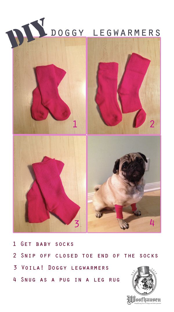 DIY dog leg warmers -- love this idea for keeping your pup away from chewing a hot spot or fragile skin warm on a freezing day.  Bosley is going to hate me for this, haha!