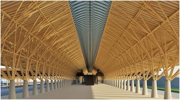 tiges de bambou, vente Toulouse, Gers, bambous gros diamètre, chaume