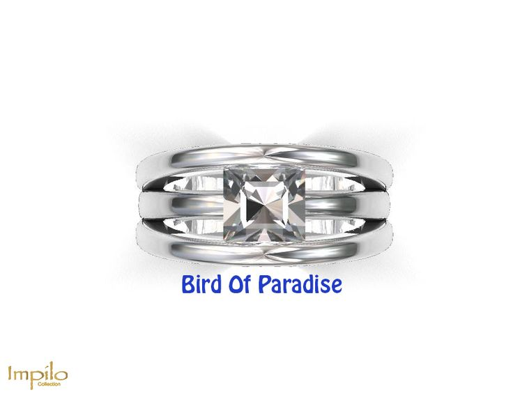 """Bird Of Paradise"" - Princess cut diamond with three split shank."