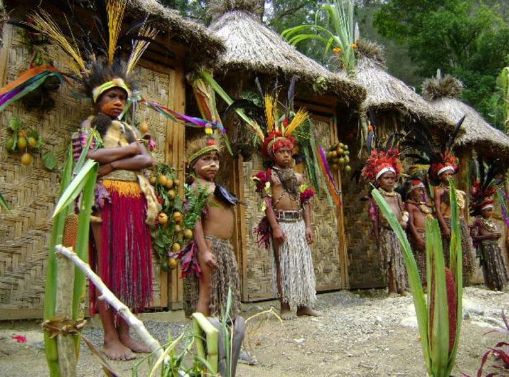 the koteka clothing of papua new Papuan highland belongs to one the most recently explored new guinea areas   with three traditional clothes that they wear koteka gourds and waiyo this.