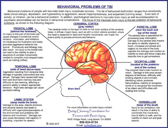 Behavioural problems of people with TBI (Traumatic Brain Injury) complicate recovery.