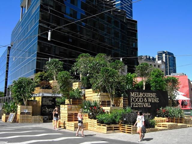 Urban Growth: Melbourne's Urban Coffee Farm