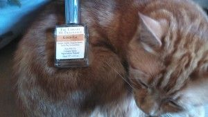 Library of Fragrance Kitten Fur Giveaway!
