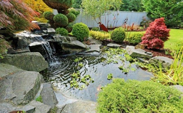 Bilder Gartenteiche Wasserpflanzen Teich grüne Wohlfühloase