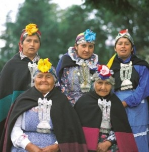 The indigenous people of Chile are called 'Mapuche'.