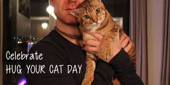 Happy National Hug Your Cat Day everyone! Pick up your cat and give them a gentle, loving squeeze!