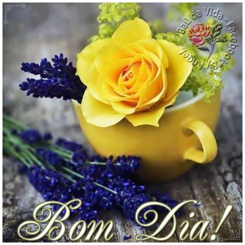 Bom Dia!   Que a tua manhã seja especial...   Que o sol brilhe na tua janela...   por entre as flores do teu jardim...   Que ele ilumi...