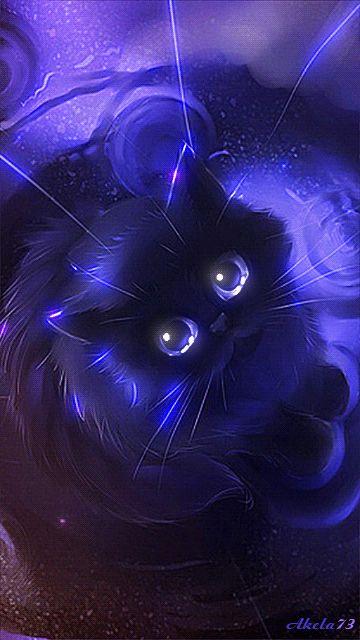 Azul gatito - Las imágenes con gatos - imágenes, imágenes en movimiento - En Vivo fotos