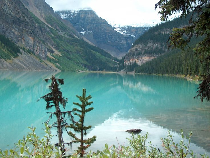 Lake Louise, Canada: Lake Louise, Dream Vacation, Favorite Places, Canada, Beautiful Places, Lakes, Places I D, Travel, Banff National Parks