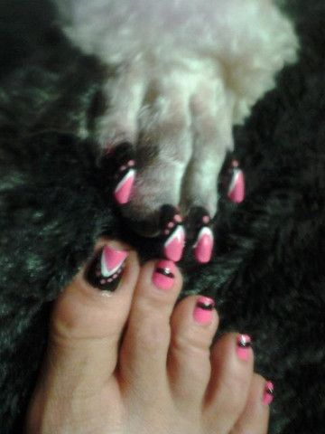 17 Best Pawdicure Images On Pinterest Dog Nails Nail Polish And Animals