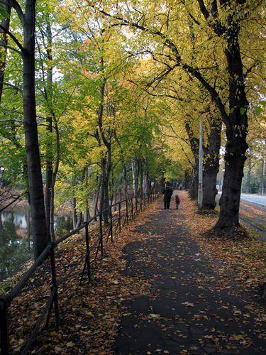 Autumn in Kaliningrad, Russia