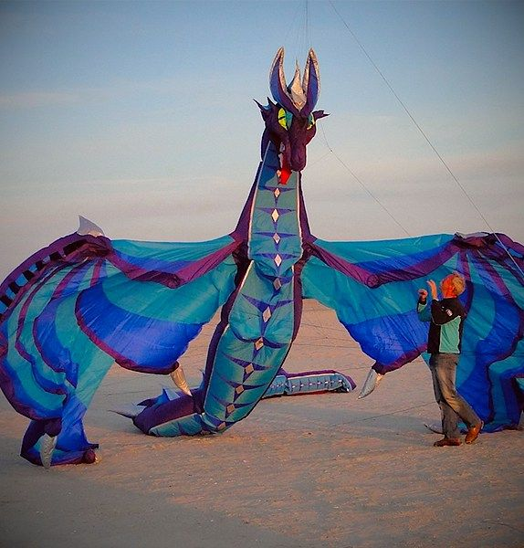 A giant kite - looks like a dragon.  €5,500 Buy | Read more