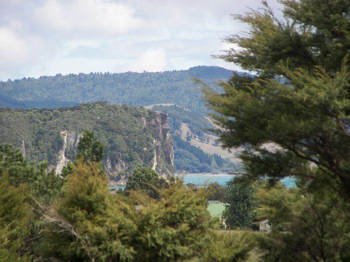 View of Purangi from hiking trail