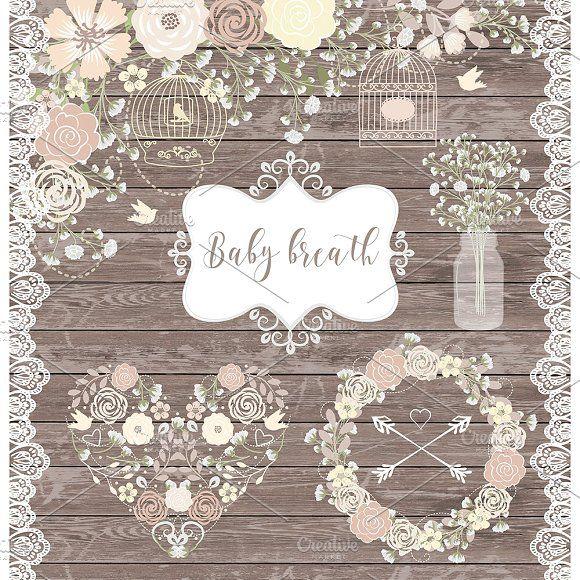 Vector baby breath cliparts by designloverstudio on @creativemarket