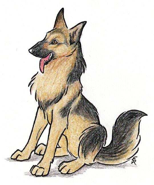 how to draw easy cartoon german shepherd