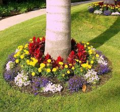 Create a flower bed around your trees for another well-contained pop of color.   39 Budget Curb Appeal Ideas That Will Totally Change Your Home