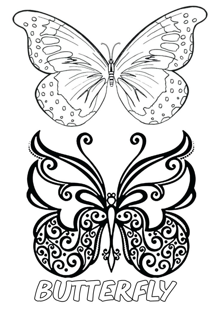 Two Butterfly Printable Coloring Pages Free Printable