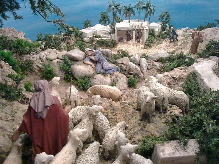 shepard & flock of sheep
