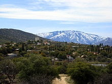reliable mt lemmon in the santa catalinas above tucson - you can even ski there - just an hour up the mt from the desert!