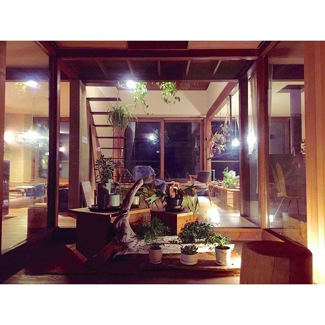 玄関。巨大な扉で玄関ポーチごと隠しているのでガラス張りにしてもプライベートは確保されている。中からはガラスショーケースの様に見えるのでお店の様にディスプレイ。今回はこんな感じで抜け感重視。#glam_plan#玄関#エントランス#ディスプレイ#流木#新築#木の家#マイホーム#設計#設計事務所#注文住宅#住宅#建築#solaの家#myhome#house#暮らし
