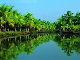 Kerala Tours – Enjoy the Beauty of God's Own Country
