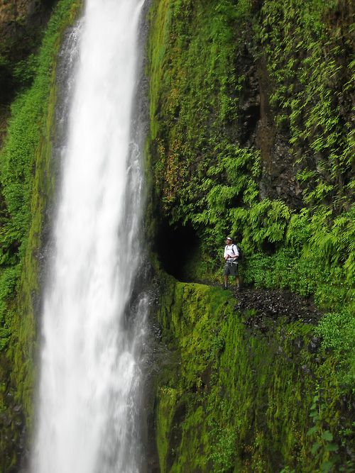 Tunnel Falls, OREagles Creek, The Eagles, Beautiful, Oregon Waterfall, Tunnel Fall, Columbia Rivers Gorge, Places, Behind Waterfal, Water Fall