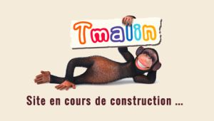 TMalin, magasin d'électroménager référencé par Référencemoi #SEO #Google #Référencement
