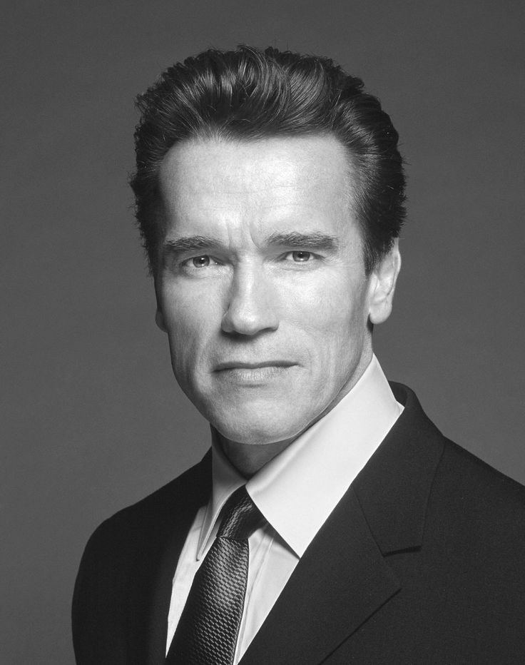 http://img.myconfinedspace.com/wp-content/uploads/2007/11/arnold.jpg