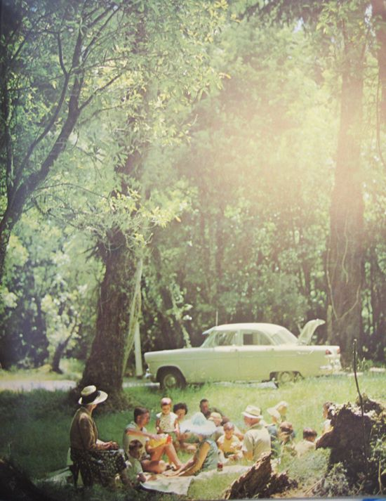 picknick a gogo #pintratuin #leefjeuit