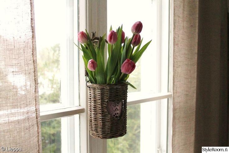 vaaleanpunainen,kukat,kevät,tulppaanit,verhot