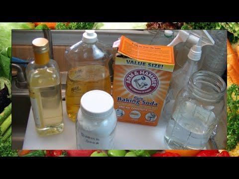 Homemade Fungicide Spray ~ Noreen's Garden - YouTube