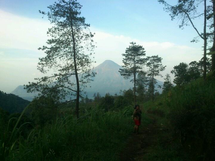 Mt. Penanggungan view, east java