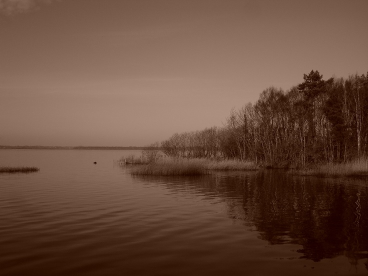 Photo of Lough Ennell, Westmeath. Where Jonathan Swift wrote Gulliver's Travels